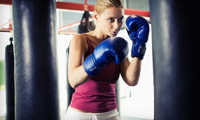 Laselva Mixed Martial Arts - East Mount Vernon: $28 for One Month of Unlimited Fighter Fitness, Boxing, or Kickboxing Classes at Laselva Mixed Martial Arts ($85 Value)