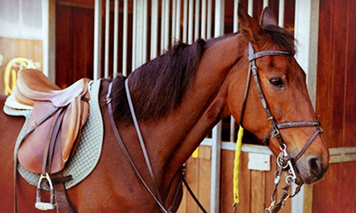 Manito Equestrian Center - Allentown: 30- or 60-Minute Private Horseback-Riding Lesson at Manito Equestrian Center (Up to 51% Off)