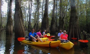 Gravity Trails Swamp Kayak Tours: 2.5-Hour Swamp Tour via Kayak with Photos for Two or Four from Gravity Trails (Up to 54% Off)