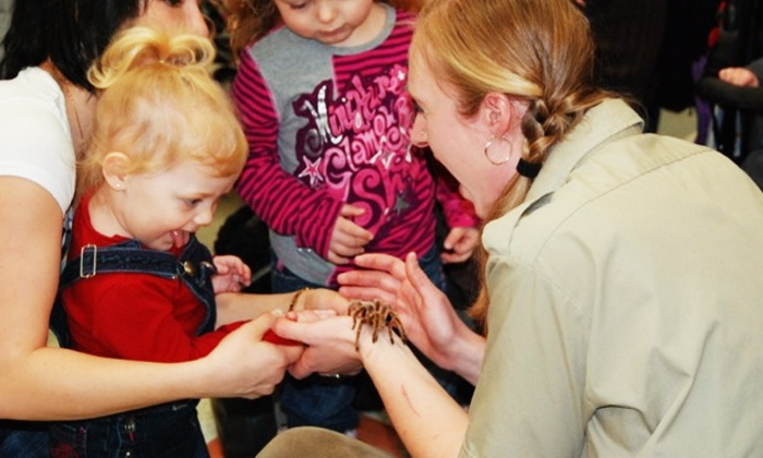 Little Ray's Reptiles - Hamilton Location: Admission for Two or Family of Four at Little Ray's Reptile Zoo (Up to 41% Off)