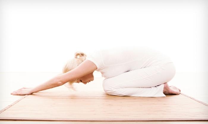 Abundant Joy Yoga & Wellness - Okauchee Lake: 10 Yoga, NIA Dance or Aikido Martial Arts Classes, or 1 Month of Classes at Abundant Joy Yoga & Wellness (Up to 70% Off)