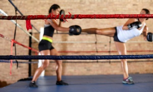Top Tier: $39 for One Month of Unlimited Women's Kickboxing Classes ($85 Value)