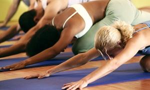 Defensive Arts Dojo: One Month of Yoga Classes or 10 or 20 Yoga Classes at Defensive Arts Dojo (Up to 64% Off)