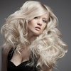 Cut and Blow-Dry Finish £19