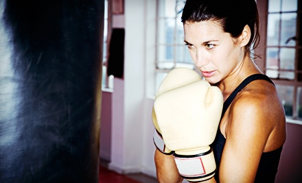 One, Two, or Three Months of Kickboxing Classes at Sunrise Taekwondo and Fitness Kickboxing (Up to 74% Off)