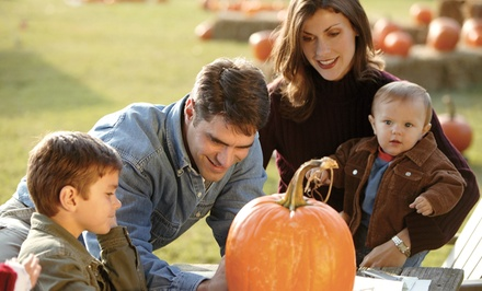 $40 for a Fall-Festival Package for Four with Hayride at The Pumpkin Patch Fall Festival ($80 Value)