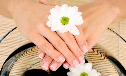 Gel Manicure, Signature Mani-Pedi, or Gel Mani-Pedi at Evidence Nail & Beauty Boutique (Up to 56% Off)