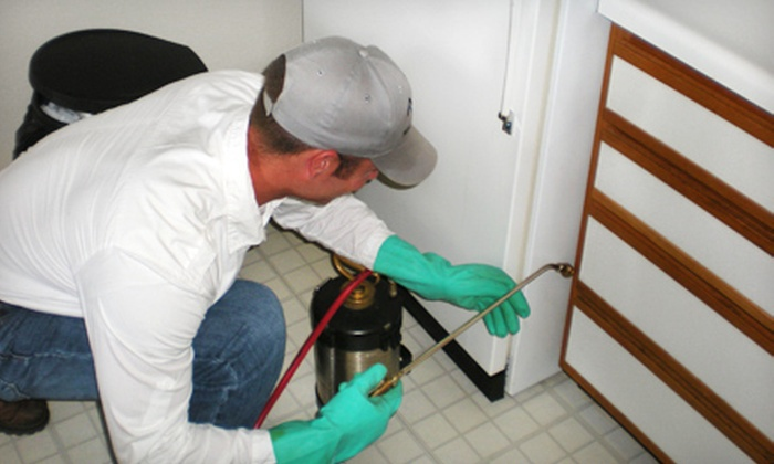 Midwest Pest Control - Tulsa Southeast Industrial District: $60 for a Full Home Inspection and Pest-Control Treatment from Midwest Pest Control ($150 Value)