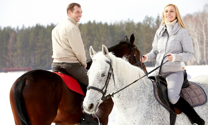 High Mountain Trail Rides - Flagstaff: Mormon Lake Horseback Tour with Lunch for Two or Four from High Mountain Trail Rides (50% Off)