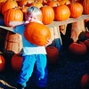 44% Off Pumpkin Patch Admission
