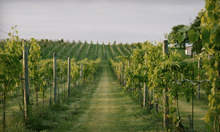 Fox Valley Winery - Oswego: $29 for Five Bottles of Summer Wine at Fox Valley Winery Inc. in Oswego ($59.75 Value)