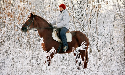 60-Minute Horseback Trail Ride for Two or Four from Silver Bit & Spur Farm (Up to 51% Off)