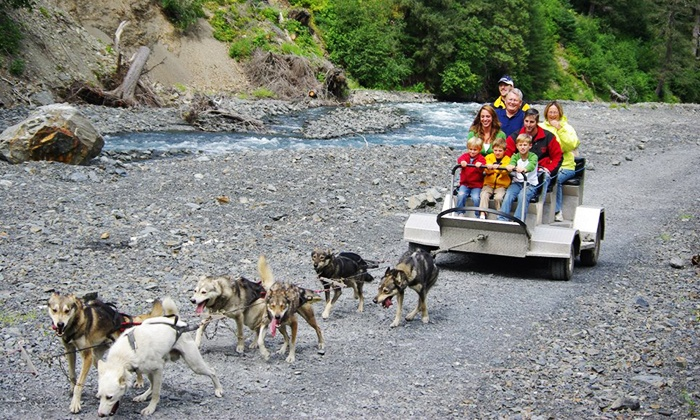 Seavey's Ididaride Sled Dog Tours - Seward: $71 for a Wilderness Dog-Sled Ride & Tour for Two from Seavey's Ididaride Sled Dog Tours ($142.14 Value)