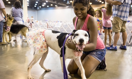 One, Two, or Four Adult Tickets to Houston World Series of Dog Shows at NRG Center on July 18-22 (Up to 45% Off)