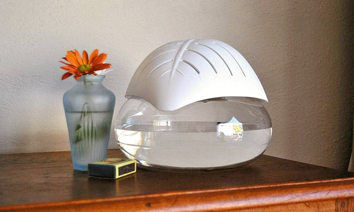 Groupon Goods: Crystal Aire Leaf Purifier Bundle for R499.99 Including Delivery (23% Off)