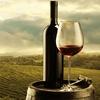 56% Off Fresh-Juice Winemaking Experience