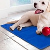 Cooling Chilly Gel Mat for Pets