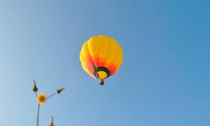 AirGlobo Murcia: Paga 9 € por un descuento de 60 € en vuelo en globo con vídeo, fotos editadas, cava y almuerzo con AirGlobo Murcia
