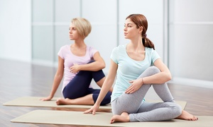 Balance Fitness: 15 Fitness Classes For One or Two from £10 at Balance Fitness