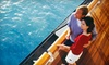 Allen Batista - New York Skyport Marina: Themed Lunch or Dinner Entertainment Cruise for One or Two from Allen Batista Travel (Up to 59% Off)