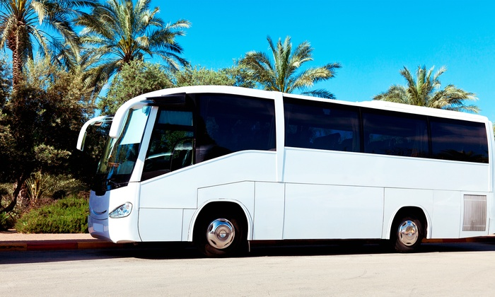 Spring Tour Bus - Multiple Locations: Bus Trip from Spring Tour Bus (50% Off). Three Options Available.