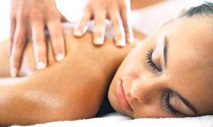 Healing Hands Massage by Diane: One or Two 75-Minute Swedish or Deep-Tissue Massages (Up to 54% Off)