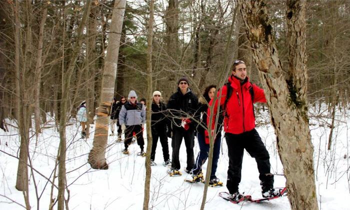 Toronto Adventures - Toronto: City Snowshoeing Tour or Adventure Bus-Trip Snowshoeing Tour from Toronto Adventures Inc. (Up to 51% Off)
