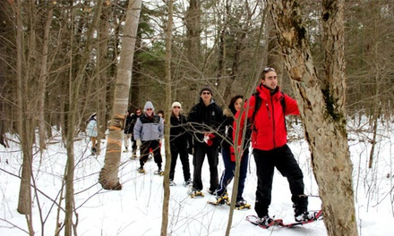 City Snowshoeing Tour or Adventure Bus-Trip Snowshoeing Tour from Toronto Adventures Inc. (Up to 51% Off)