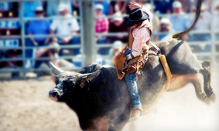 Salt Lake County Fair Rodeo - Salt Lake City: Championship Bull Riding, Mutton Bustin', and Barrel Racing at the Salt Lake County Fair on August 8 (Up to 55% Off)