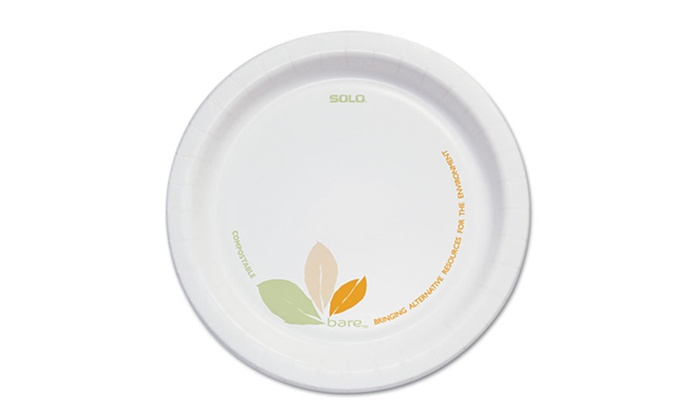"1 Carton of SOLO Bare Paper 6"" Dinner Plates (500 Plates): 1 Carton of SOLO Bare Paper 6"" Dinner Plates (500 Plates)"