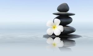 Vizualcoaching Ltd: Ontdek de kunst van mindfulness, opleiding met diploma voor €29