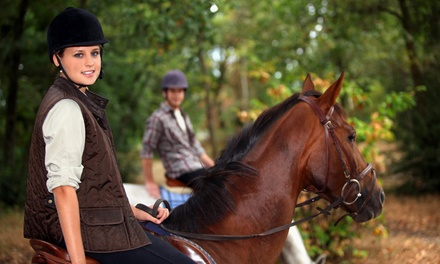 Trail Ride for One or Two or Riding Lesson at Wonder Valley Ranch Resort and Conference Center (Up to 51% Off)