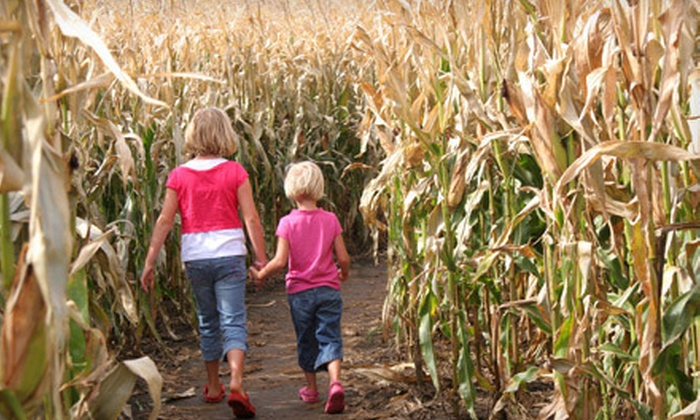 Engelke Farm - Brunswick: Haunted Hayride and Corn Maze for Two or Four at Engelke Farm (Up to 51% Off)