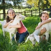 Up to Half Off Petting-Farm Visits