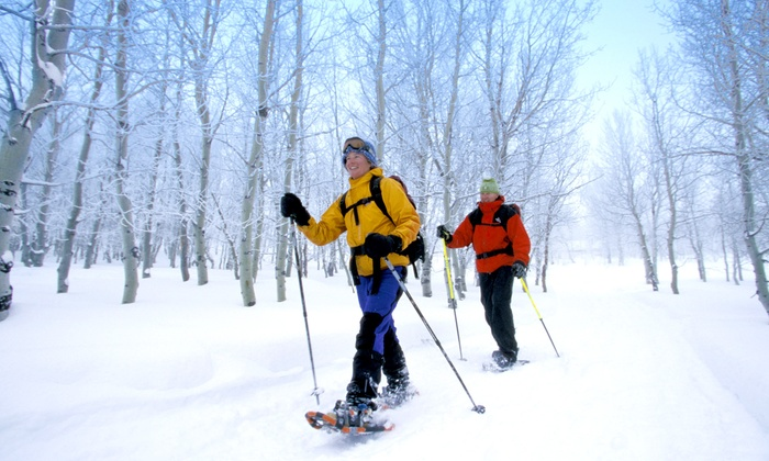 Adrenalinbecker - Skilift Untersmatt: 1 Tag Schneeschuhe zum Verleih inkl. Teleskopstöcken für 1 oder 2 Personen bei Adrenalinbecker (bis zu 56% sparen*)