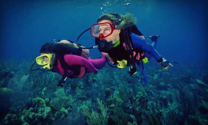 Upstate Scuba - Upstate Scuba LLC: Scuba-Certification Course with Optional Chartered Dive Trip from Upstate Scuba (Up to 53% Off)