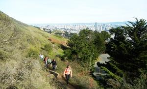 Urban Hiker SF: $49 for an Urban Hike from Urban Hiker SF ($49 Value)