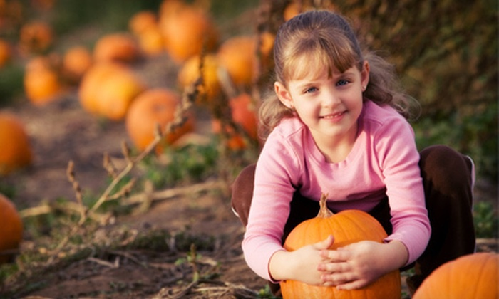 Pa's Pumpkin Patch - SEADIP: Unlimited rides for One, Two, or Four at Pa's Pumpkin Patch (Up to 56% Off)