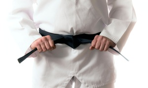 Cherry Hill Martial Arts and Fitness: 4 or 10 Martial Arts Classes for One or a Family of Three at Cherry Hill Martial Arts and Fitness (Up to 87% Off)