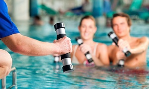 Absolute Fitness: One- or Two-Month Gym Membership Including Pool Access at Absolute Fitness (Up to 61% Off)