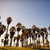 Stay at Homewood Suites by Hilton Oxnard in Oxnard, CA