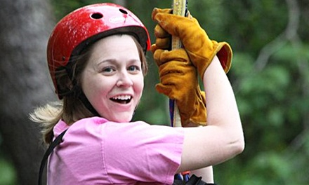 Pay only $35 for this Zipline Tour valued at $79