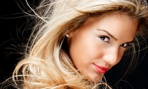 Xanadu Salon & Spa: Haircut and Blow-Dry with Optional Deep-Conditioning Treatment at Xanadu Salon & Spa (Up to 61% Off)