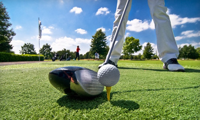 Bristol Harbour - Rochester: One or Three 50-Minute Golf Lessons at Bristol Harbor in Canandaigua (Up to 56% Off)