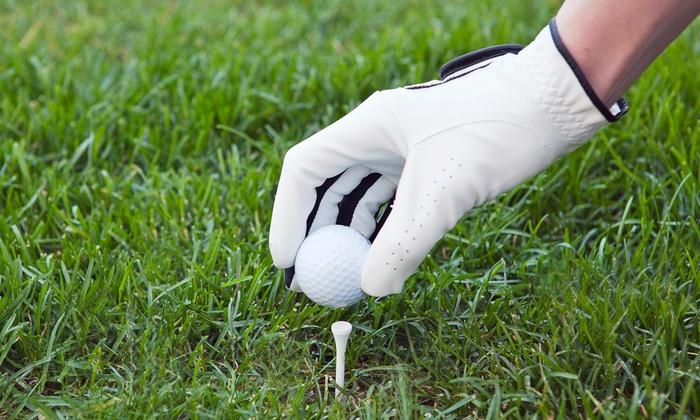 Rocky Rafkin, PGA at San Clemente Municipal Golf Course - San Clemente: 4-Week Semi-Private Golf Training Package from Rocky RafkinPGAat San Clemente Municipal Golf Course (58% Off)