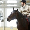 58% Off at Horse Healing Adventures