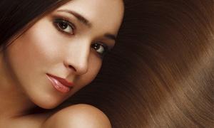Sta Friseure: 1x oder 2x Waschen, Schneiden, Föhnen für Damen bei STA-Friseure (bis zu 56% sparen*)