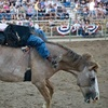 Ogden Pioneer Rodeo Up to 45% Off Rodeo Event