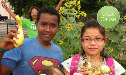 Grassroots youth farm in minneapolis st paul groupon for 526 salon st paul