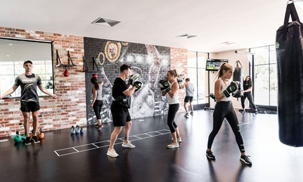 Green Zone Fitness Joondalup Up To 85 Off Joondalup